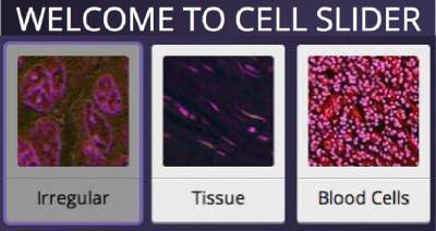 Cell Slider