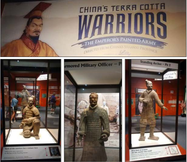 Terra Cotta Warriors at The Children's Museum of Indianapolis