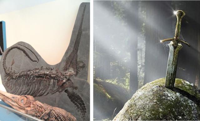 Excalibosaurus costini