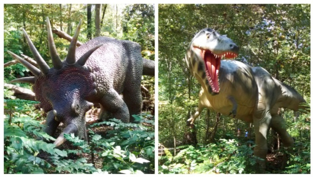 Styracosaurus and Albertosaurus on the Dinosaur Trail at the Museum of Life + Science