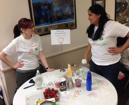 Strawberry DNA Isolation ingredients, all you need, Central Indiana Science Outreach