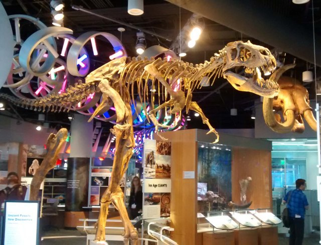 North Carolina Museum of Natural Sciences From Dinosaurs to DNA