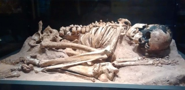 Early Human from 15,000 years ago first evidence of ritual burial at the Field Museum